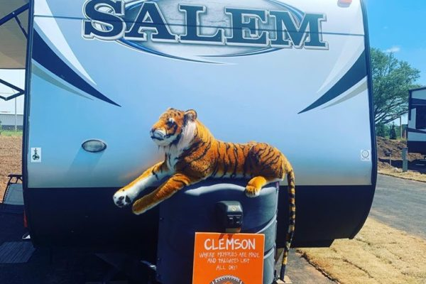 Salem Tiger]